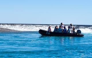 gi-au-western-australia-montgomery-reef-zodiac-people-img-5050-2015-apt-us-16-9