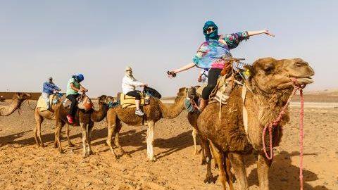XMSC_morocco_sahara_desert-traveller-camel