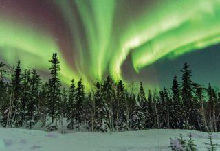 gi-a-causa-canada-yellowknife-northern-lights-over-woods-466054722-i-16-9