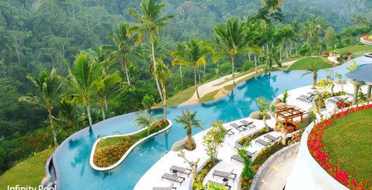 padma-ubud-infinity-pool